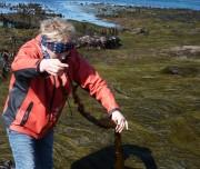 Prannie Rhatigan Seaweed