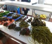 Seaweed cooking with Prannie Rhatigan