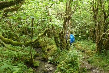Yoga, Entspannen und Wandern - von Celtic Spirit